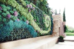 Fae Garden