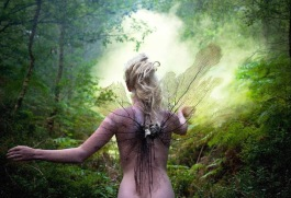 Fairy Running Away
