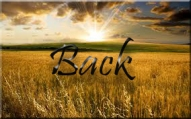 BACK TAGGED2
