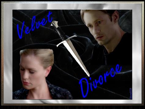 Velvet Divorce Banner FINAL